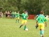 jakubova-vola-ovcie-111